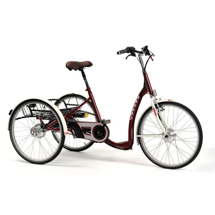 TRICYCLE-2219-BORDEAUX (1)